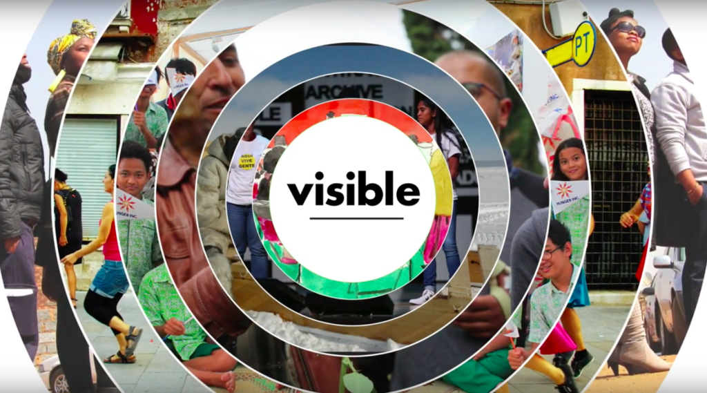 What is the Visible project?